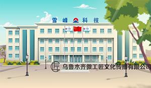 新疆雪峰科技集团入场须知